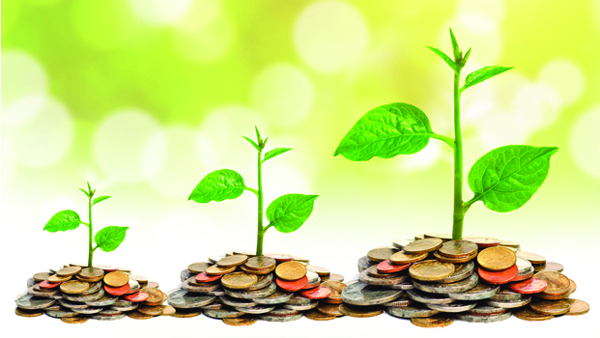 Banii ecologici - din ce in ce mai cautati in UE